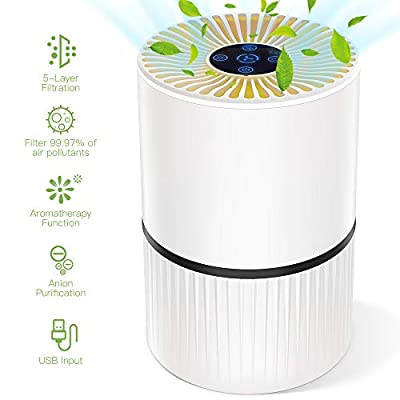 Duomishu Air Purifier Air Cleaner Home with True HEPA Filter, Anion Purification & Aromatherapy Function, 3 Timer, 5 in 1 Portable Air Purifiers with Night Light for Allergies/Pets/Smoke/Germs/Dust