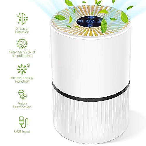 Duomishu Air Purifiers for Home ...