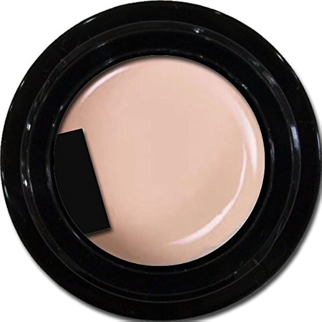 道流用する誰カラージェル enchant gel color gel S101 Plum Sheer 3g/ エンチャントジェル カラージェル S101プラムシアー 3グラム