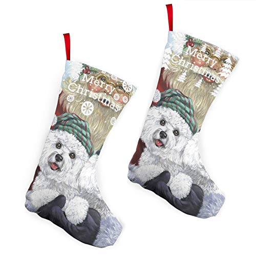 Pummbaby Cute Bichon Frise Christmas Dog Giftmerry Christmas Stockings Xmas Socks Ornament Themed 10 Inch Double 2pcs Large Pair Formal Unique Female Male Hanger Pole