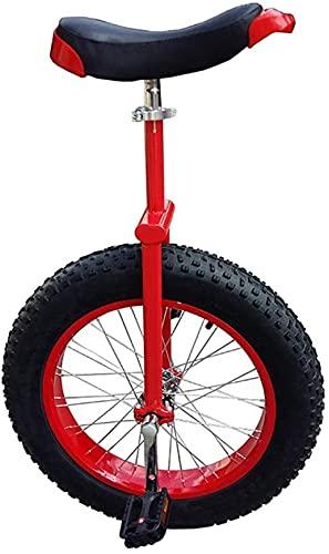 Bicicletas Monociclo Unicycle 20 24 Pulgadas Rueda Unicycles