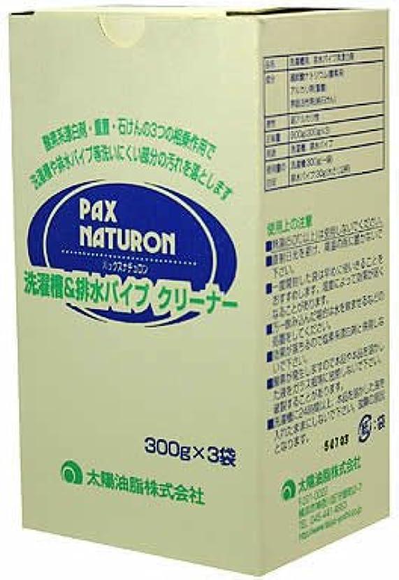 欠陥追跡スズメバチ洗濯槽&排水パイプクリーナー300gX3袋