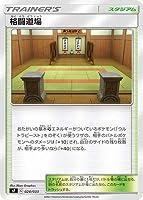 ポケモンカードゲーム PK-SF-024 格闘道場【ICHIGEKI】