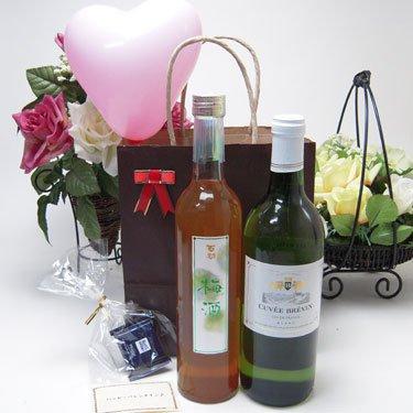 お誕生日 セット ギフトセット 白ワイン梅酒セット(キュヴェ・ブレヴァン フランス白ワイン750ml 南高梅酒500ml)合計2本 メッセージカード ハート風船 ミニチョコ付き(別の日指定する)