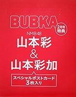NMB48 山本彩&山本彩加 スペシャルポストカード BUBKA 2017年2月号 付録
