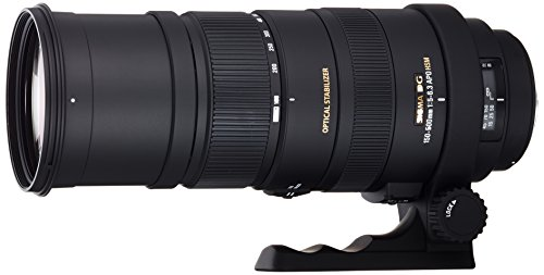 Sigma 150-500 mm F5,0-6,3 DG OS HSM-Objektiv (86 mm Filtergewinde) für Sigma Objektivbajonett