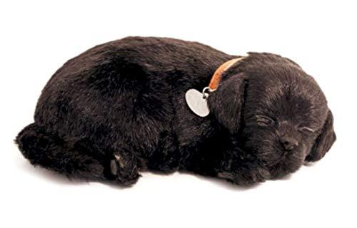 Perfect Petzzz Cucciolo di Labrador Retrieve Nero, Che Respira