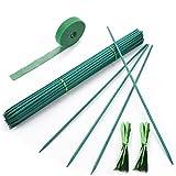 Qefuna 30Pcs 16 Inch Garden Stakes Green Bamboo Sticks...