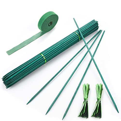 Qefuna 30Pcs 16 Inch Garden Stakes Green Bamboo Sticks Decorative Garden Wood Stakes for Plants, Wooden Plant Support Sticks, Small Stakes for Garden with Garden Ties and Nylon Plant Tie Strap