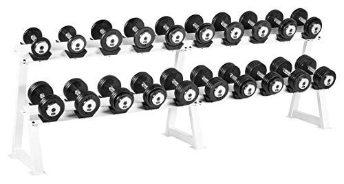 Bad Company Studio Heavy Duty - Juego de mancuernas (10 pares de mancuernas de 5 kg a 27,5 kg, peso total 378 kg, hierro fundido)