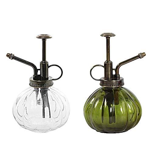 HPiano Regadera Vintage 2 pcs Botella de rociador de Agua, Watering Can Regadera, Botella de rociador de Agua Retro Decorativa de Vidrio Transparente, Herramientas de jardinería
