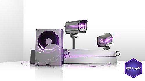 WD Purple 6TB Surveillance Hard Disk Drive - 5400 RPM Class SATA 6 Gb/s 64MB Cache 3.5 Inch - WD60PURX [Old Version]