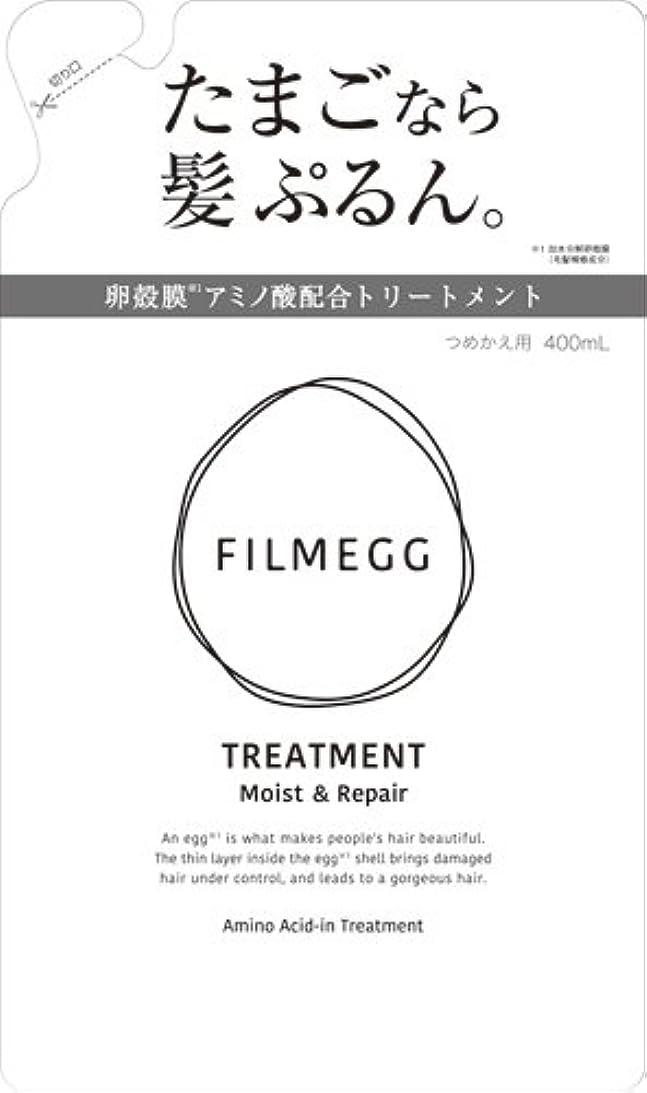 力学信頼性のある家具FILMEGG(フィルメッグ) トリートメント 詰替え 400ml