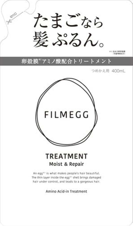掃除気を散らす研磨剤FILMEGG(フィルメッグ) トリートメント 詰替え 400ml