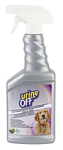 Urine off - gegen das Markieren im Haus