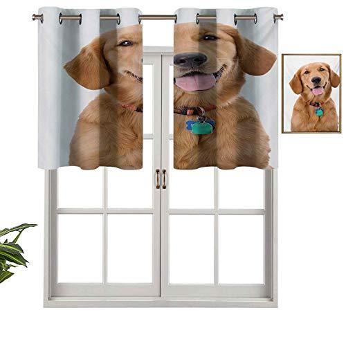 Cortinas térmicas aisladas con cenefa, panel de cortina de retrato de perro joven pedigrí con collar y etiquetas de animales domésticos, juego de 2, 42 x 36 pulgadas para decoración de salón comedor