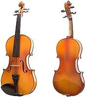 キャンバス箱とブラジルの弓とのモデルバイオリン光沢のある色 SADUKL