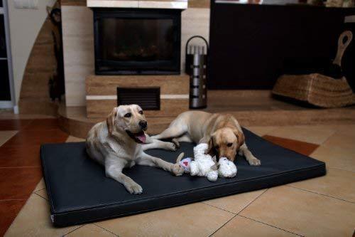 tierlando Carlos Ortho-Medic Orthopädische Hundematte Kunstleder Visko Hundebett Matratze Größe: XXL - 150x100cm - CA6 | Farbe: 02 Graphit