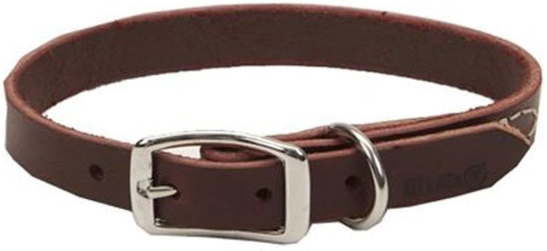 Coastal Pet 02106 B LAT20 Leather Dog Collar, 3 4 by 20Inch