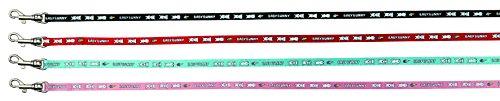 Trixie 6265 Geschirr mit Leine für kleine Kaninchen, Nylon, 20–33 cm/8 mm, 1,25 m