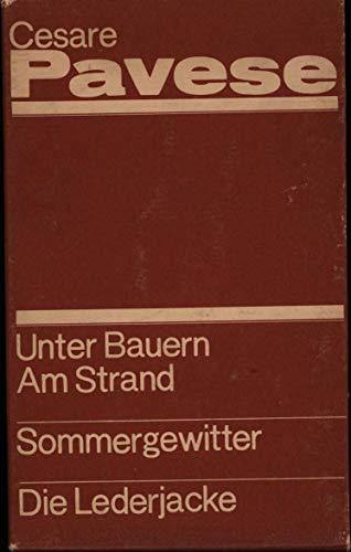 3 Bücher im Schuber 1. Unter Bauern. Am Strand. Zwei Romane,2. Sommergewitter. Erzählungen 3. Die Lederjacke. Erzählungen