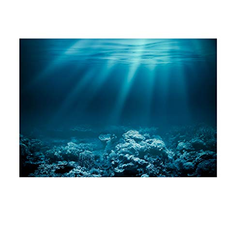 SM SunniMix Aquarium Hintergrund Poster Fisch Tank Dekoration - Unterwasser, XS