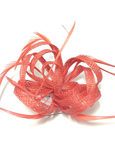 COLOURED LOOPED HESSIAN NET & FEATHER FASCINATOR BEAK CLIP BROOCH PIN WEDDINGS (Coral) by Generic