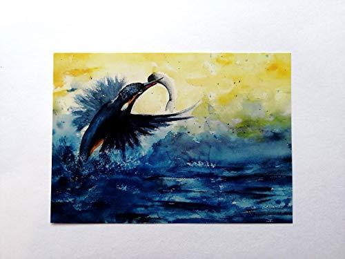 Postkarte/Druck/Eisvogel/inkl. Briefumschlag/Format C6