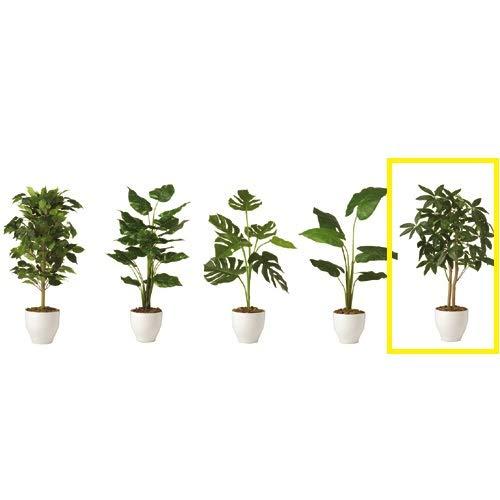 [ベルメゾン] フェイクグリーン 消臭 人工観葉植物 パキラ(鉢ホワイト)