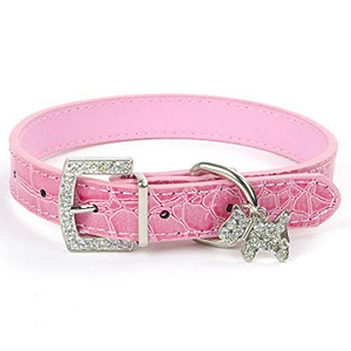 AEAP 1pcPU Leather Dog Collar for Small Dogs Pets Accessories Chien Pinch Collar for Dogs Leash Pet Supplies Perros Mascotas Cachorro