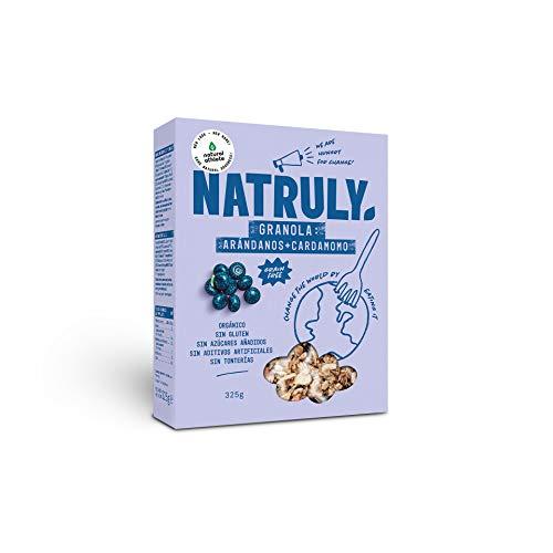 NATRULY Granola BIO de Frutos Secos y Semillas Sin Cereales, Sin Gluten y Sin Azúcar Refinado, Vegana, Sabor Arándanos -325g