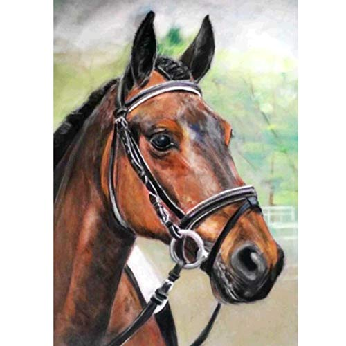 diamond painting horse MXJSUA fai da Te Pittura Diamante 5D Kit Trapano Rotondo Completo Immagine di Strass Arte Artigianato Decorazione della Parete di casa 30x40 cm Cavallo Marrone