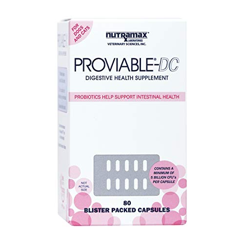 Nutramax Proviable-DC Digestive Health Supplement