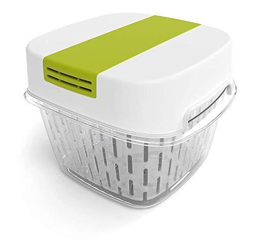 Rotho Fresh kleine Frischhaltedose 1,6l mit Belüftung, Kunststoff (SAN) BPA-frei, weiss/grün, 1,6l (15,5 x 15,5 x 12,3 cm)