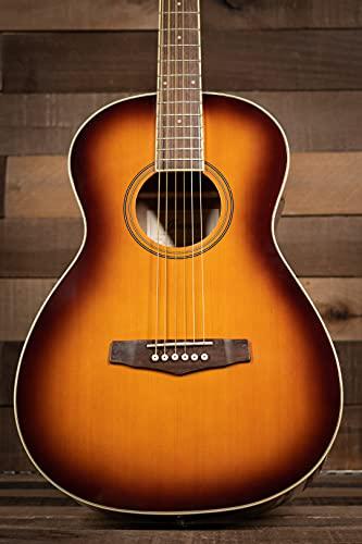 Ibanez PN15 Parlor Size Acoustic Guitar Brown Sunburst