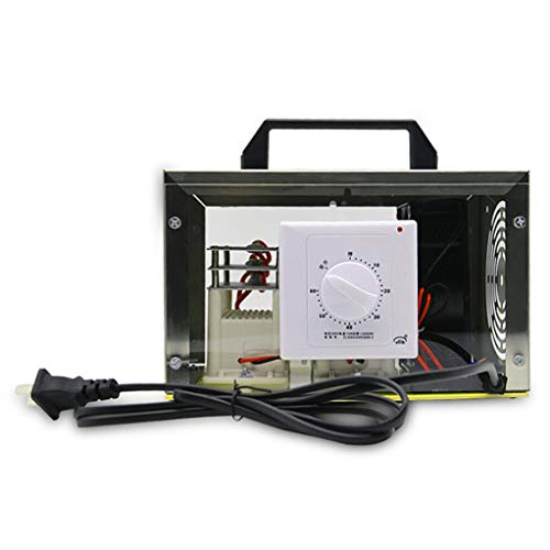 Buy RuBao Car Ozone Generator, with Cigarette Lighter Cable and Power Converter,Professional Air Pur...