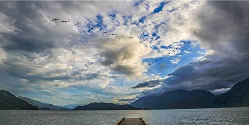 NoNo Blauer Himmel Und Weiße Wolken Fliegen Vögel Harrison Lake Vancouver DIY Digitales Ölgemälde -Digitales Ölgemälde Wanddekoration Malvorlagen Ölgemälde Tapeten Familieninteraktion