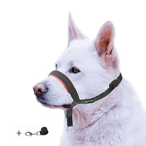 ILEPARK Gepolsterter Hundehalfter aus Leder - Hundehalsband-Halfter der Ziehen verhindert, Einstellbar, Maulkorb Hunde (S, Rot)