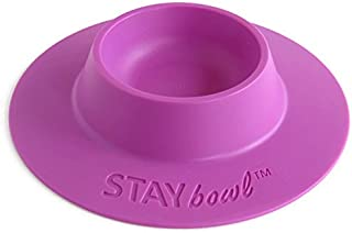 STAYbowl Tip-Proof Ergonomic Pet Bowl for Guinea Pig and Other Small Pets, 1/4-Cup Small Size, Lilac (Purple)