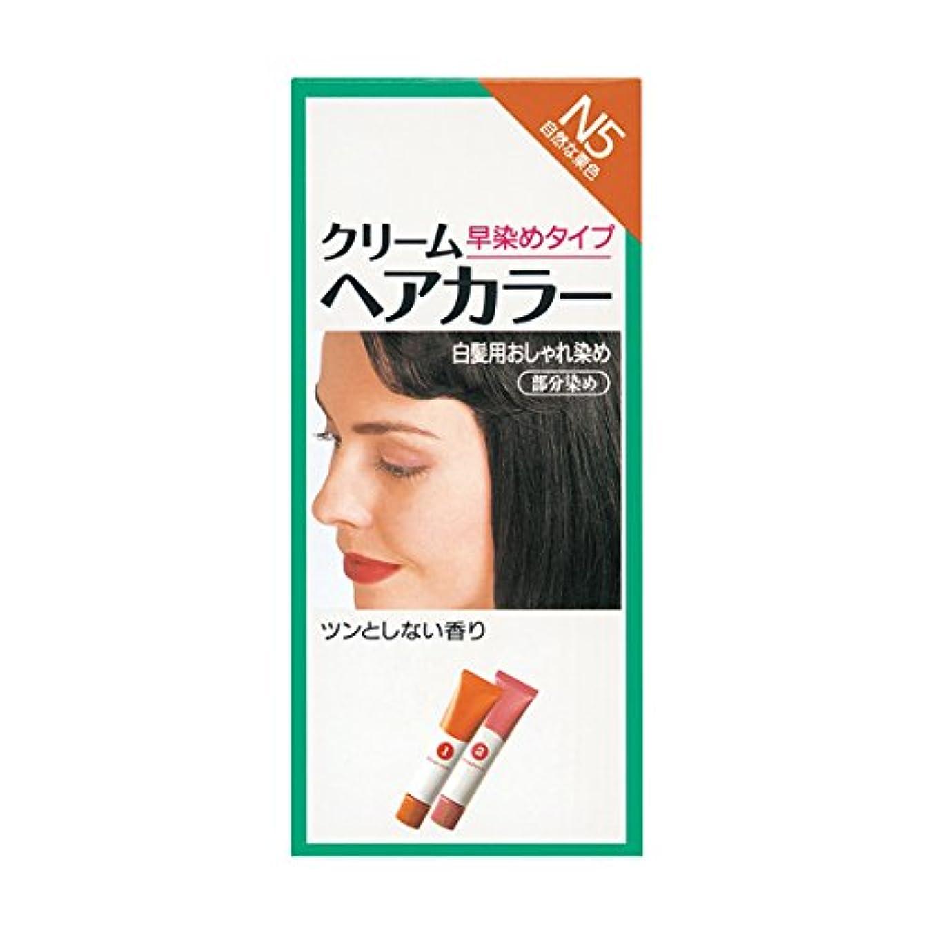 十分控えめな相対サイズヘアカラー クリームヘアカラーN N5 【医薬部外品】