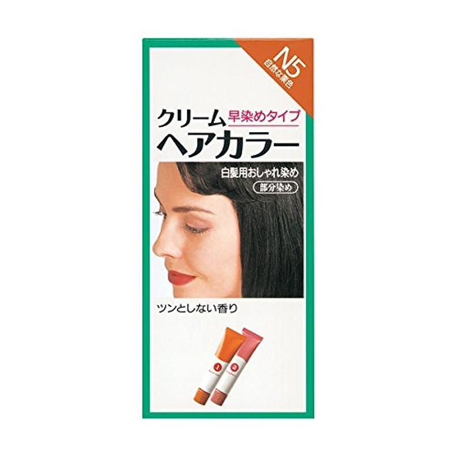 国際メジャーブレークヘアカラー クリームヘアカラーN N5 【医薬部外品】