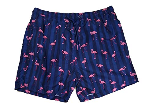 Primark Limited Heren Volledig gevoerde Flamingo zwembroek