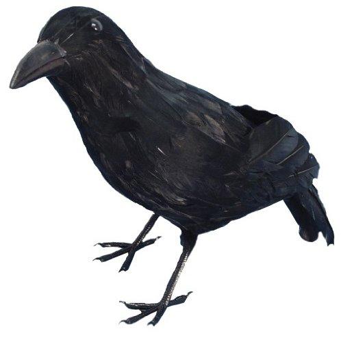 Black Bird schwarze Krähe Gruseldeko Halloween Monster Kult Deko für schaurig schöne Spukdeko Totenvogel Monster