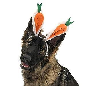 Midlee Carrot Bunny Ears Easter Dog Headband Costume (Large)