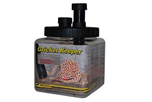 Lucky Reptile Cricket Keeper, für die Haltung von Futterinsekten