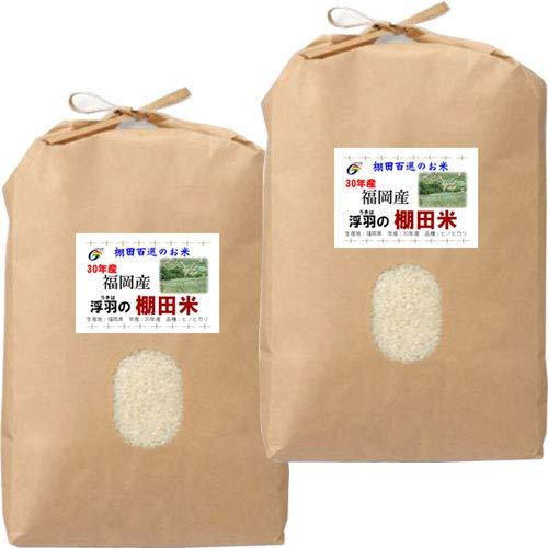 令和元年産 福岡産 JAにじ 棚田米 ヒノヒカリ 10kg (5kg×2袋) (5分づき(精米後約4.75kg×2))