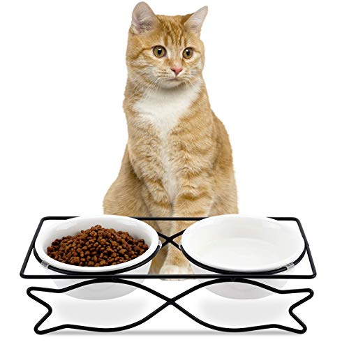 WANTRYAPET Ceramic Raised Cat Dog Bowls, Pet Cat Dog Feeder Food and Water Bowls, Double Cat Dishes with Metal Elevated Stand for Small Dogs and Cat, Cute Fish Design