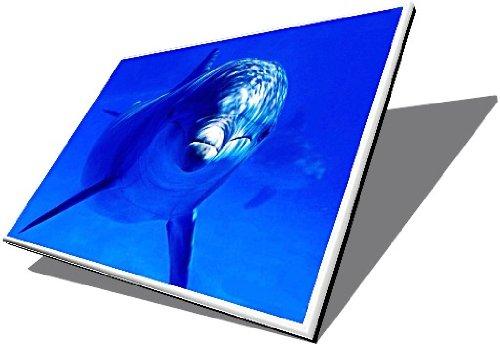 15.6 TFT LED HP PAVILION DV6-3065EA SHINY SCREEN