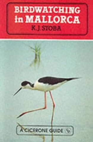 Bird Watching in Majorca