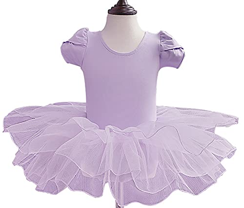 ZRFNFMA Kinder Tanzröcke Mädchen Mesh Tutu Kleid Mädchen Trainingskleidung Kinder Kurzarm Ballett Performance Dance Rock, hellviolett, 13 yards